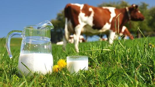 Lapte ecologic, Foto: greenacres.com