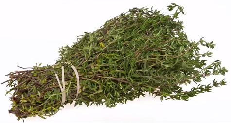 Cimbru, plantă folosită în aromaterapie