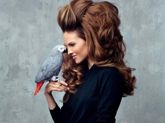 Coafură elegantă cu părul tapat, Foto: fansshare.com