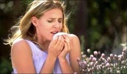 Alergii la polen, Foto: intranet.tdmu.edu.ua