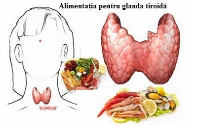 Dietă recomandată pentru refacerea funcțiilor optime ale glandei tiroide, Foto: healthforbetterliving.blogspot.com