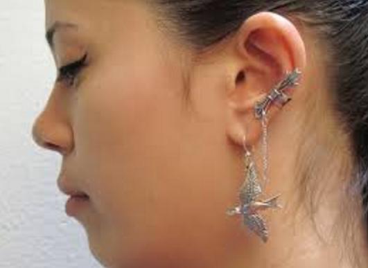 Bijuterii de urechi, Foto: ww2.amicnews.com