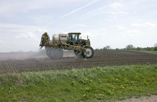 Folosirea pesticidelor în exces are efecte nocive asupra sănătății, Foto: poltava.to