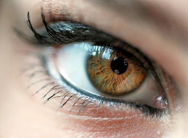 Ochii, cele mai delicate structuri ale organismului, Foto: vk.com