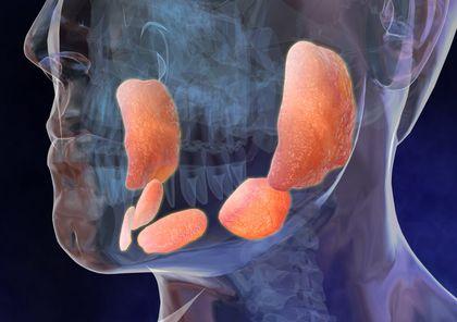 Oreionul, inflamația glandelor salivare, Foto: colady.ru