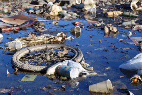 Poluarea mediului înconjurător, Foto: school.xvatit.com