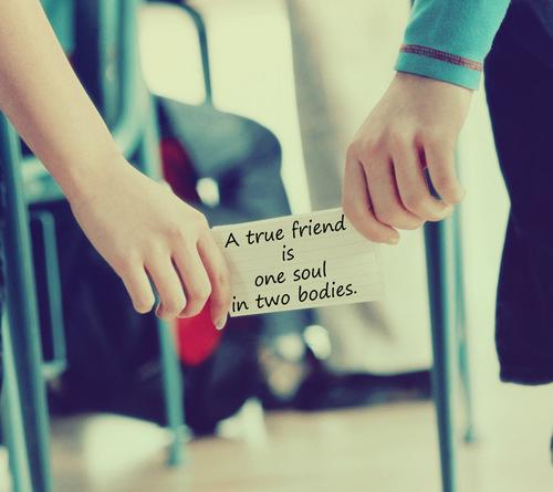 Prieten adevărat, Foto: lovethispic.com