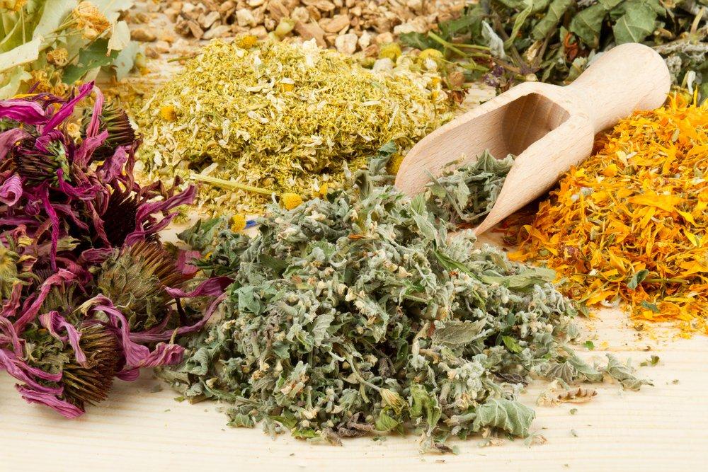 11-plante-medicinale