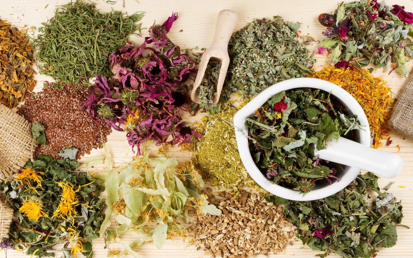 2-plante-medicinale-tratamente-naturiste