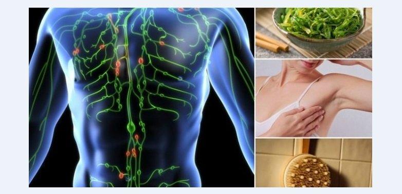 9-sistemul-limfatic