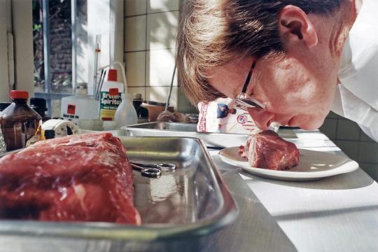 Carnea alterată produce intoxicație alimentară dacă este consumată, welt.de