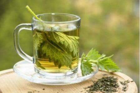 Ceaiul de urzică te scapă de sforăit!, Foto: tvoyamolodost.ru