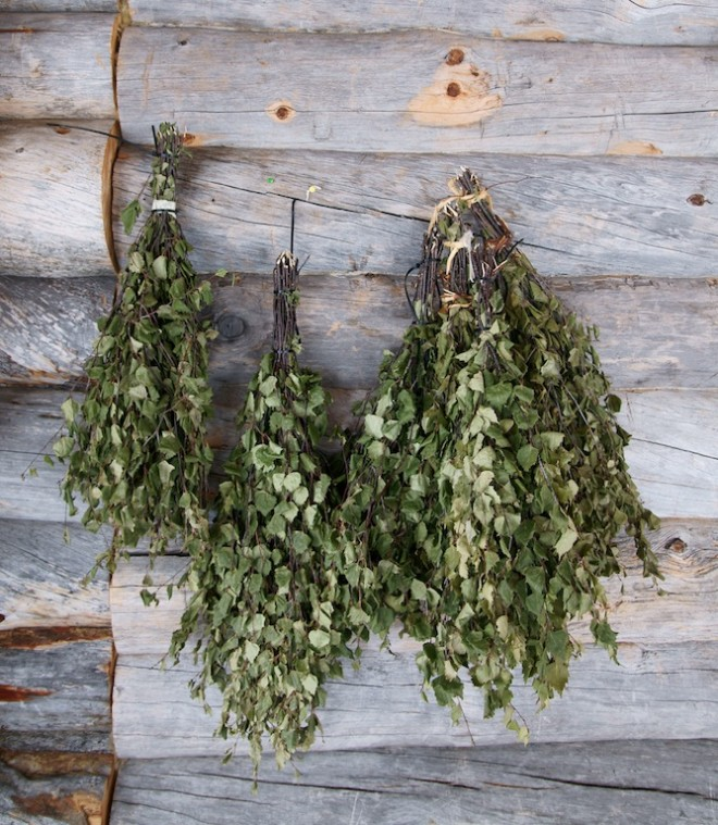 Măturica din stejar, Foto: community.poppyswap.com