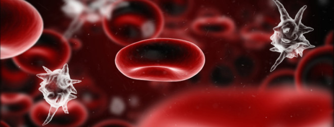 Septicemia, infecția în sânge, Foto: cdc.gov