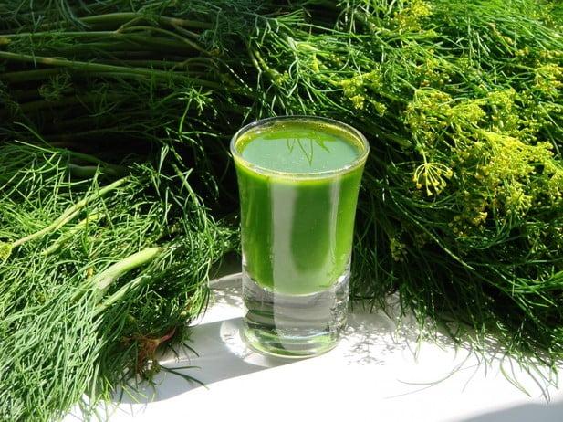 Suc natural din mărar proaspăt, Foto: isobilie.mypage.ru