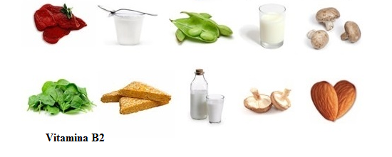 Surse naturale de vitamina B2