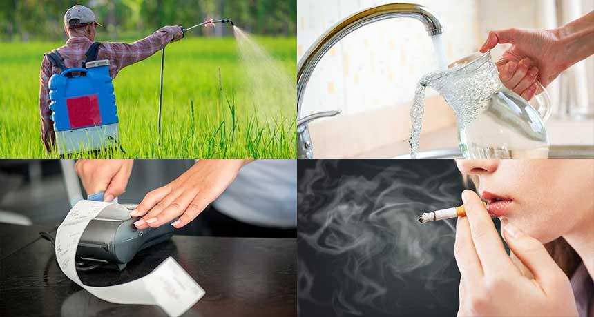 6-program-de-detoxifierea-organismului