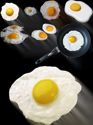 Ouăle au proteine, Foto: vectorhq.com