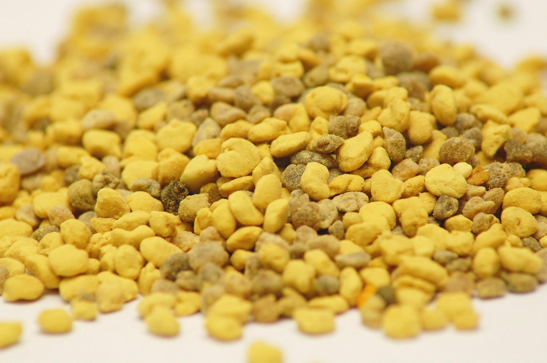 6-polen-de-albine